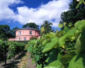 Rosendals trädgård på Djurgården