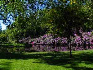 Ronneby_Brunnspark